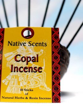 Native Scents Copal Incense Sticks