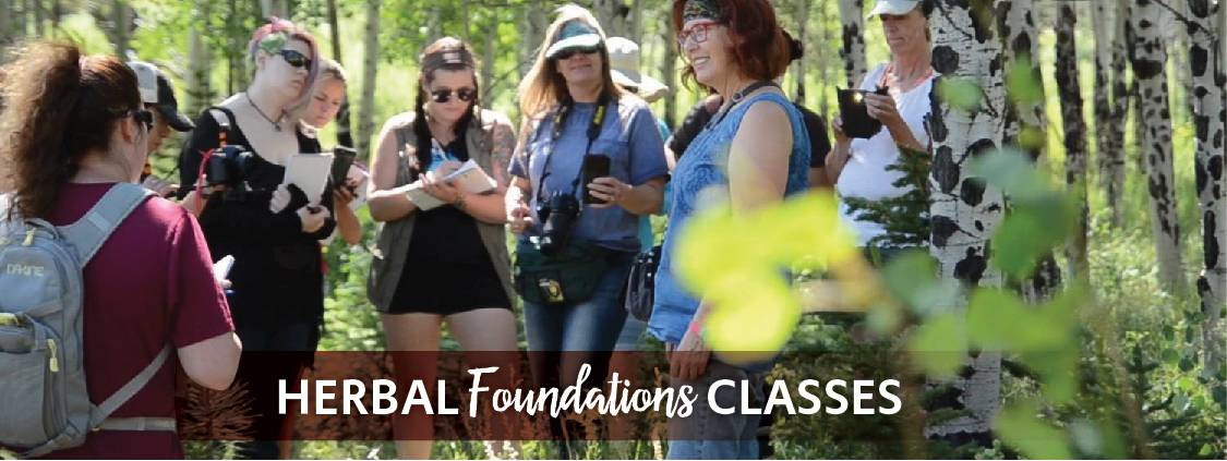Herbal Foundations Classes
