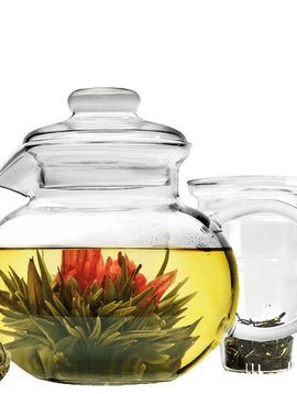 Glass Tea Pot w/ Infuser