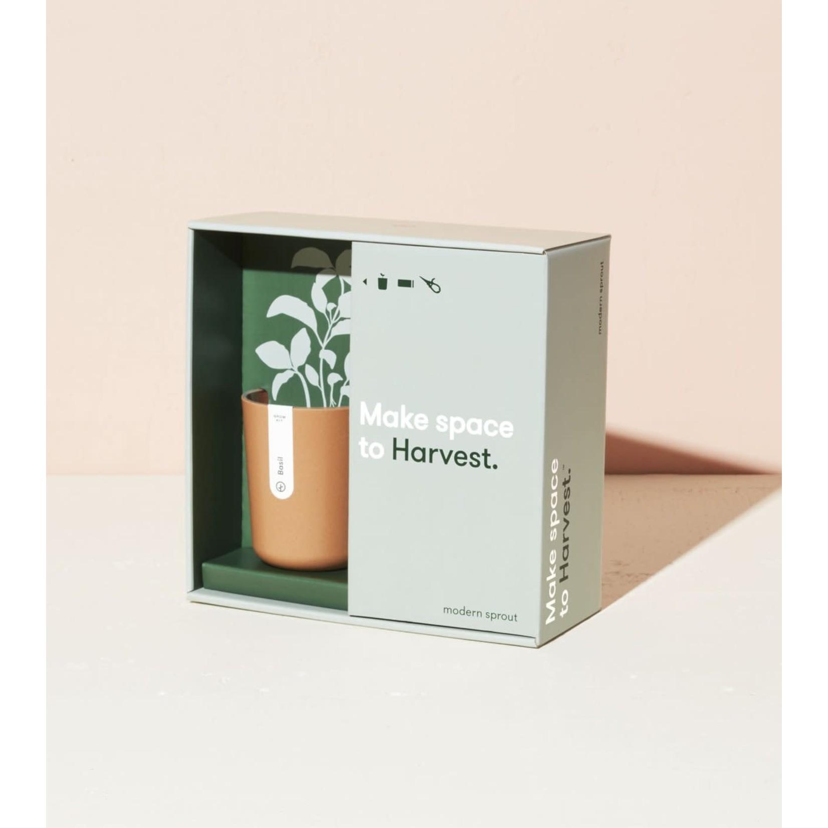 Modern Sprout Ensemble cadeau HARVEST / basilic bio