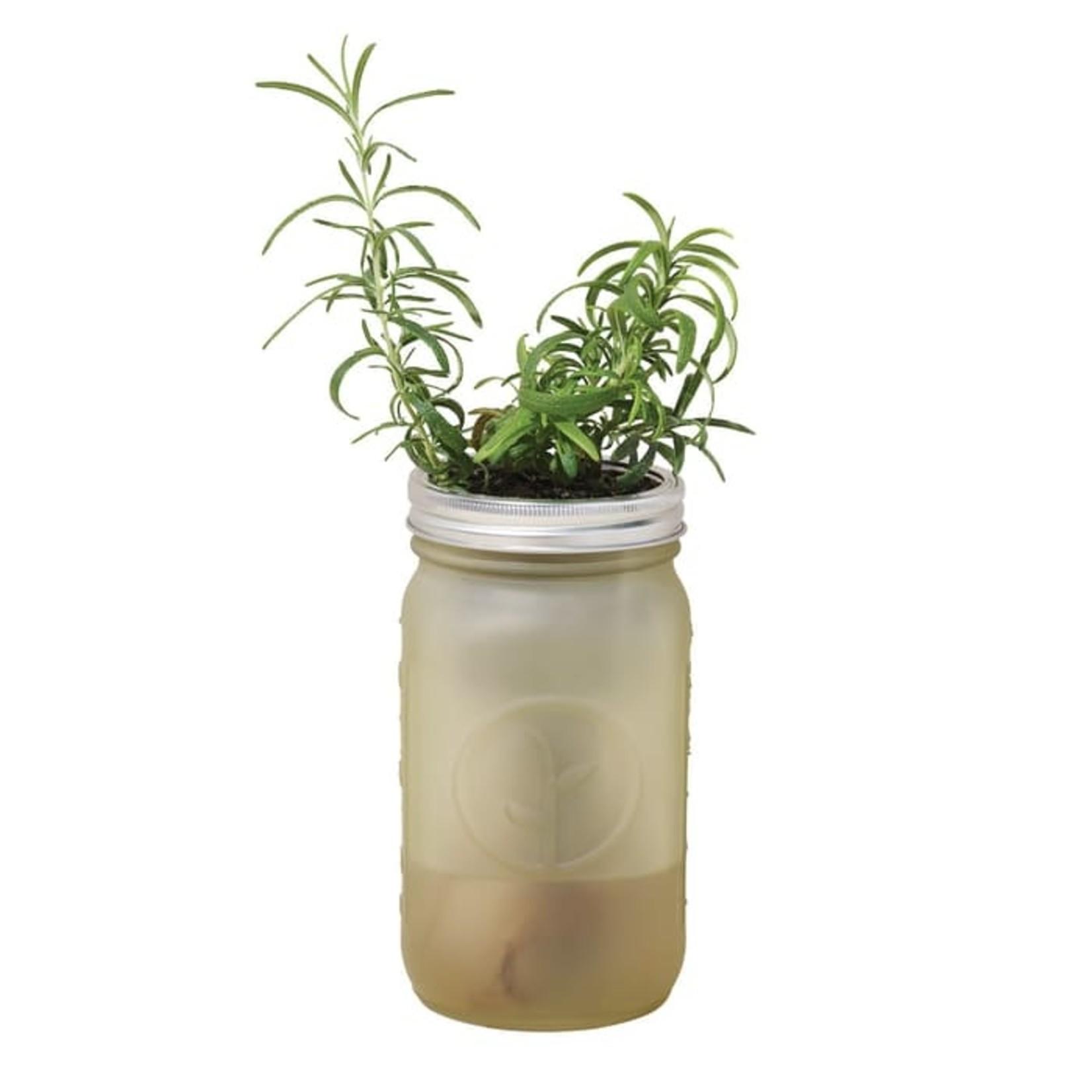 Modern Sprout Bocal de jardin - Romarin
