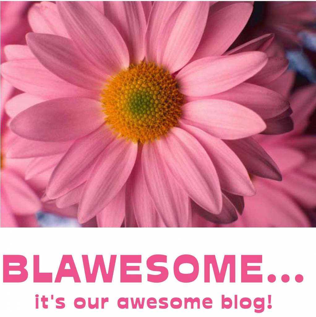 "New Year, New Blog... it's called ""Blawesome!"