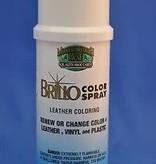 Brillo Shoe Color Spray