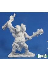 Reaper Miniatures Bones: Nor'okk Ettin