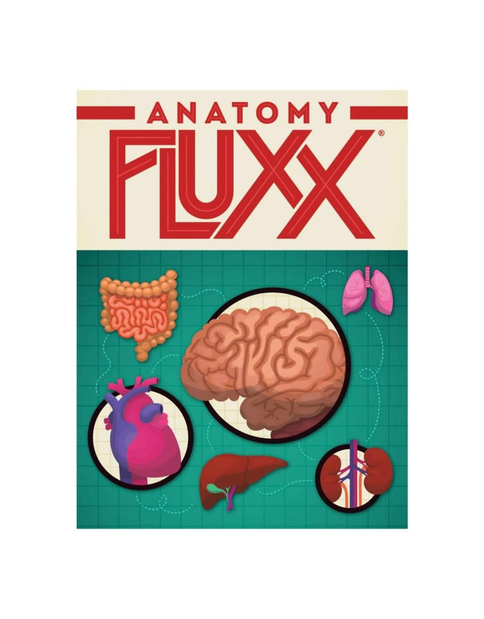 Looney Labs Anatomy Fluxx