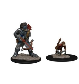Wizkids Wardlings Boy Rogue and Monkey
