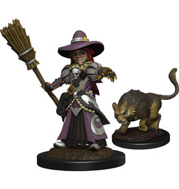 Wizkids Wardlings Witch and Cat