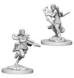 Paizo D&D Nolzurs Mini: Air Genasi Female Rogue