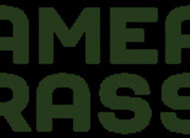 Gamer Grass