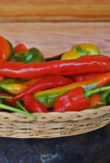 Fermented Hot Sauce Making 101 Class - Tuesday, 10/1, at 6:30 pm