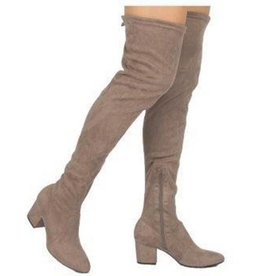 Autumn Lights Over The Knee Boots- Taupe