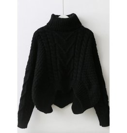 On The Line Turtle Neck Sweater- Black