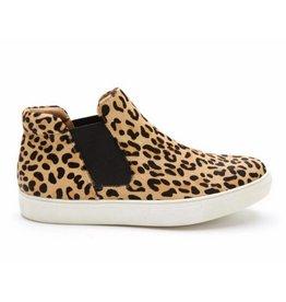 MATISSE Harlan - Leopard