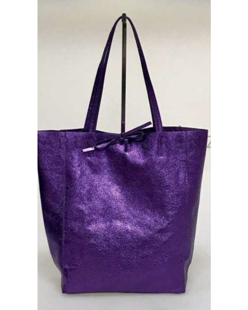 Mettalic Leather Bag