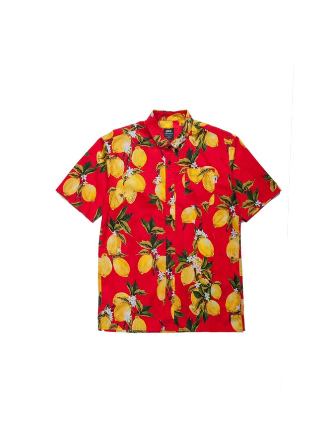 Ezar Button Up