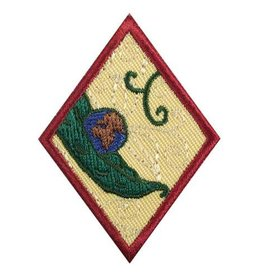 GIRL SCOUTS OF THE USA Cadette New Cuisines Badge
