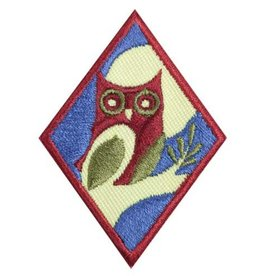 GIRL SCOUTS OF THE USA Cadette Night Owl Badge