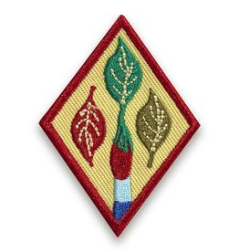 GIRL SCOUTS OF THE USA Cadette Outdoor Art Apprentice Badge