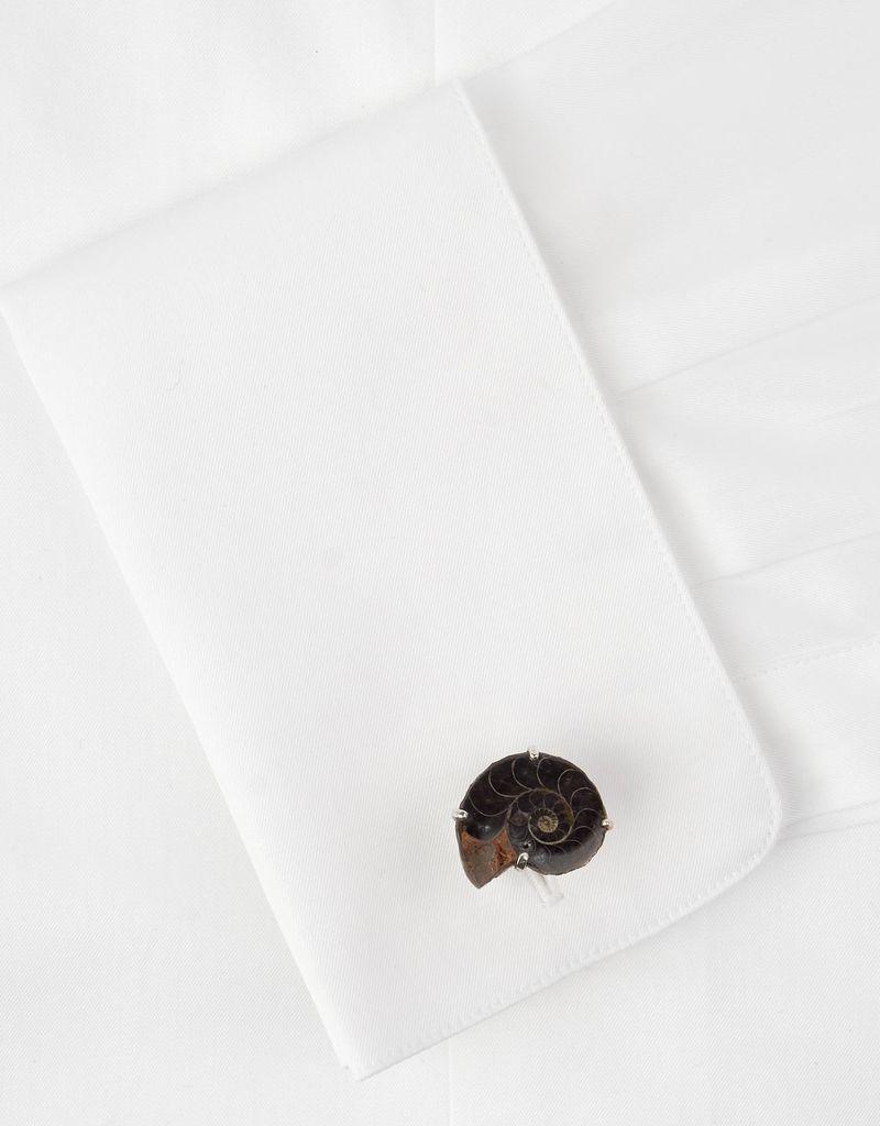 Shell Cufflinks