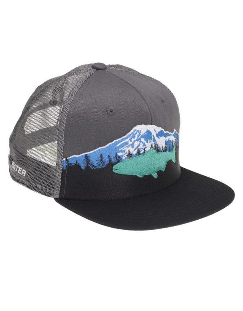 Rep Your Water Mount Rainier