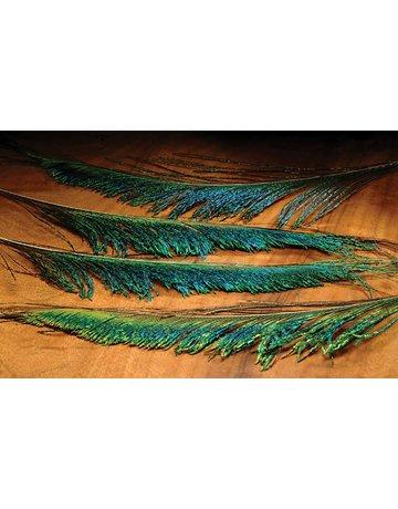 Hareline Dubbin Peacock Sword