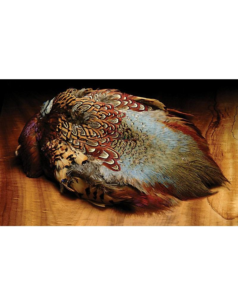 Hareline Dubbin Ringneck Pheasant Skin