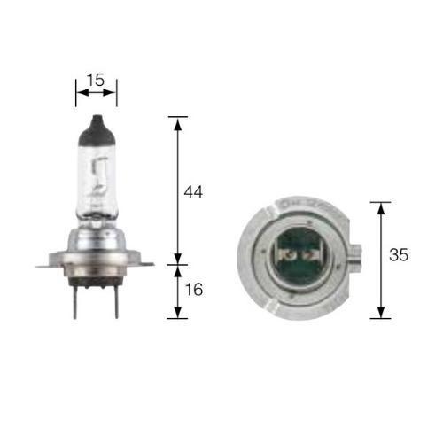 Narva 12V H7 55W PLUS 100 Halogen Headlight Globe (Blister pack of 2)