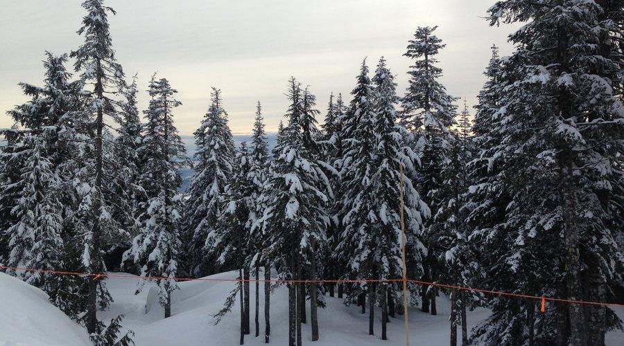 Snow hits Vancouver