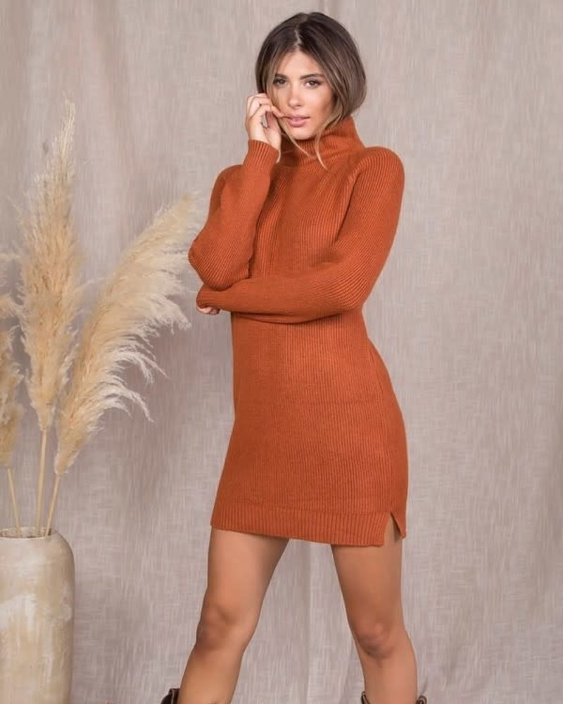 Hallie Turtleneck Dress
