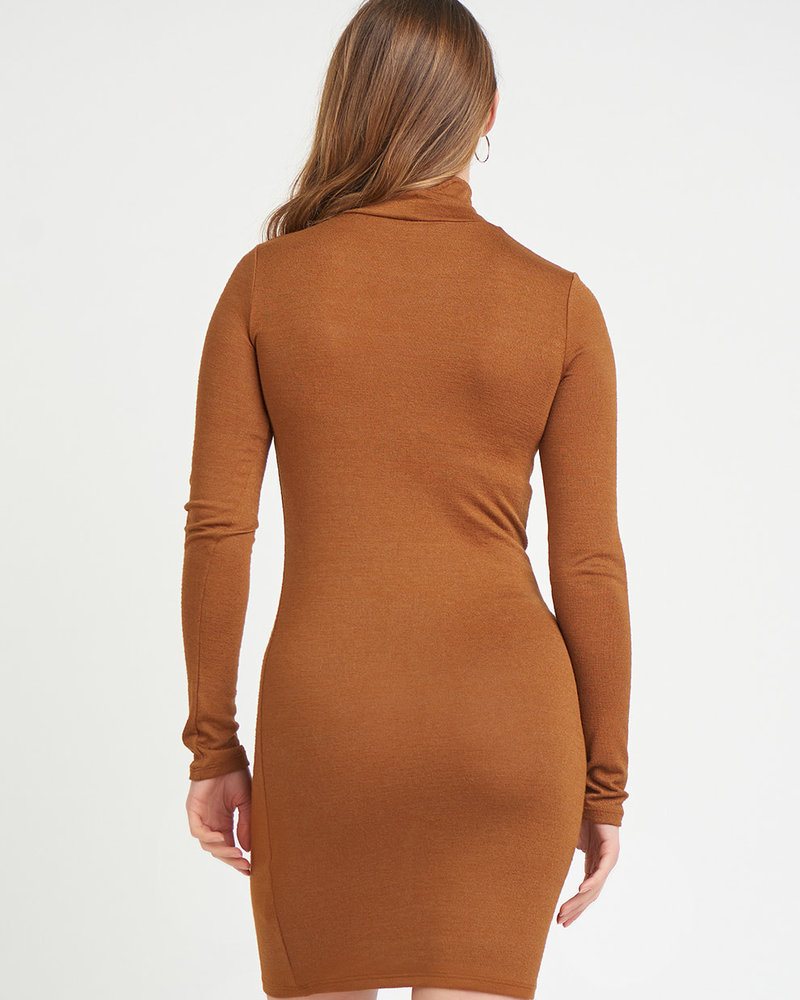 Hale Turtleneck Dress