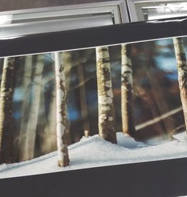 14 x 11 matted prints
