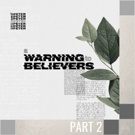 02(V053) - Faith's Convictions - Continued CD WED