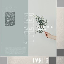 TPC - CD 06(V047) - The Question Of Suffering CD WED