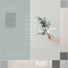 TPC - CD 07(V048) - Arm Yourselves CD WED