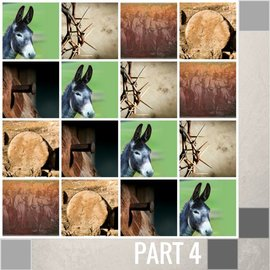 04(N024) - The Donkey - Remembering The First Palm Sunday CD SUN