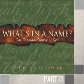 11(I020) - Jehovah-Rohi CD WED 7PM
