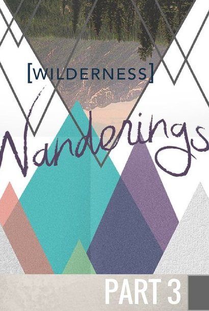 03 - The Wilderness Of Loneliness  By Pastor Jeff Wickwire | LT00993
