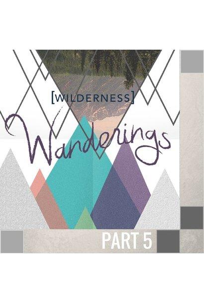 05(A044) - The Wilderness of Betrayal CD SUN