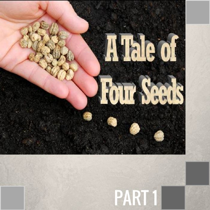 Tpc Cd 01 L021 The Seed Sown By The Roadside Cd Sun The