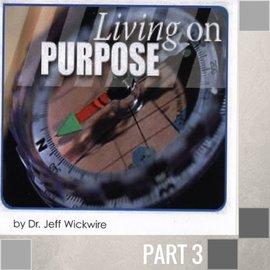 03(J028) - God's Purpose Has A Season CD SUN