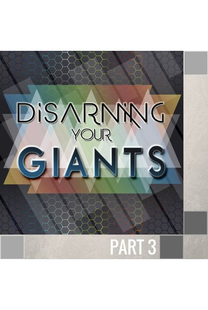 03(L028) - Disarming The Giant Of Offense CD SUN