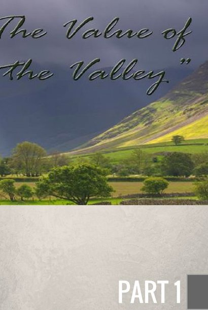 00(NONE) - The Value Of The Valley CD SUN
