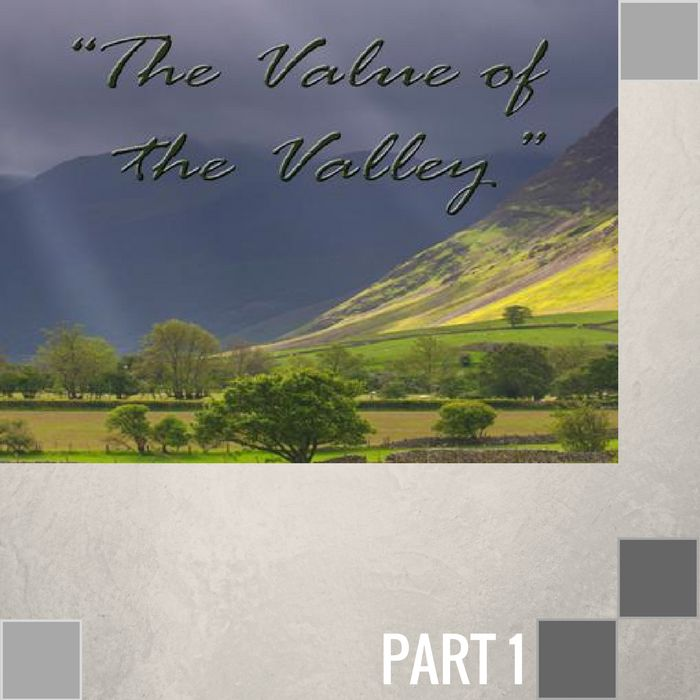 00(NONE) - The Value Of The Valley CD SUN-1