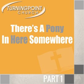 TPC - CD 00(NONE) - There's A Pony In Here Somewhere CD SUN