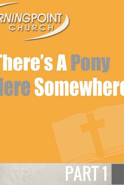 00(NONE) - There's A Pony In Here Somewhere CD SUN