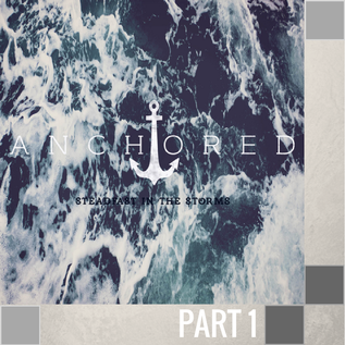 01(T033) - The Purpose In Your Storm CD SUN