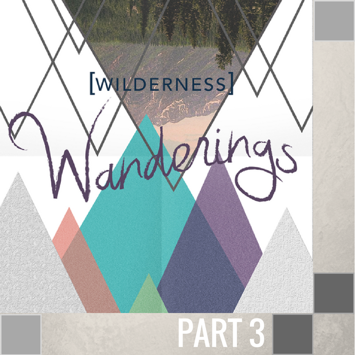 03 - The Wilderness Of Loneliness  By Pastor Jeff Wickwire | LT00993-2