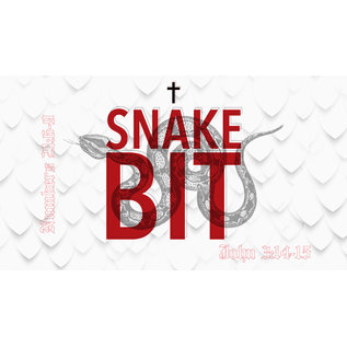 TPC - CD 00(M032) - Snake Bit CD SUN