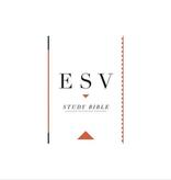 Bible ESV Study Bible Standard Size HardBack Black