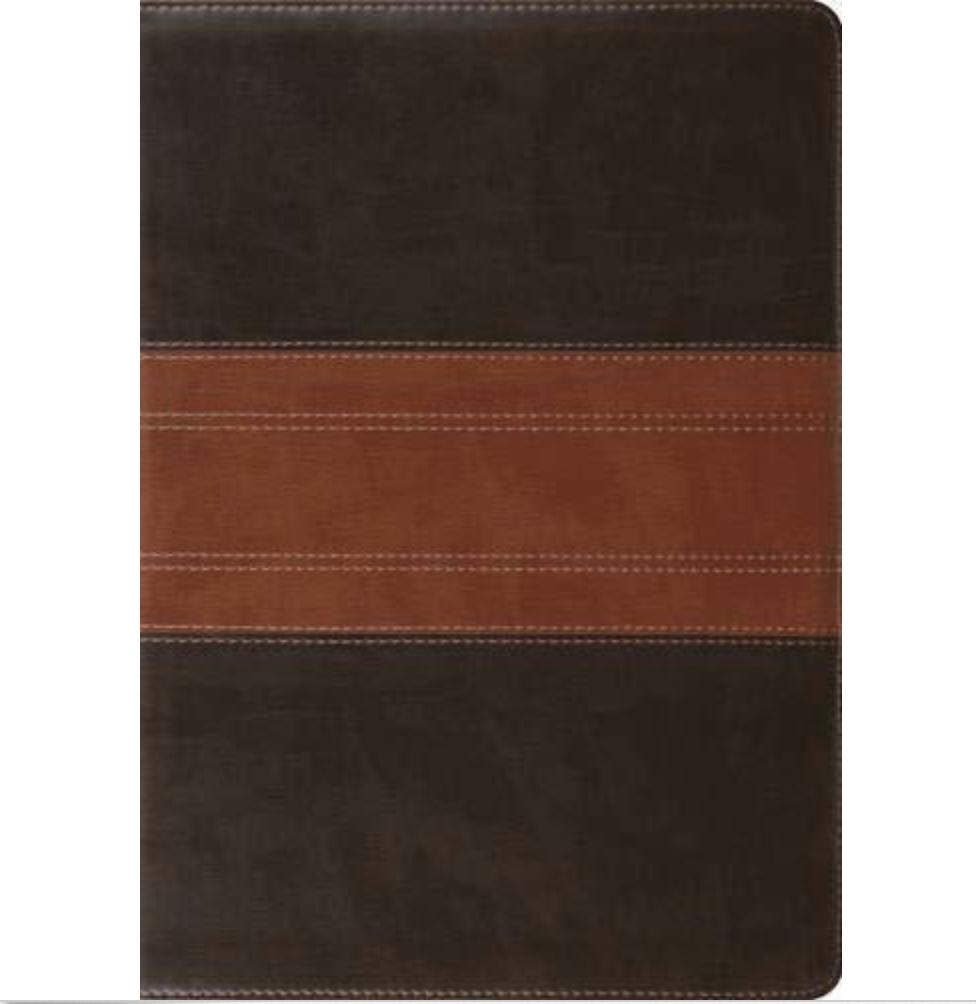 Bible ESV Study Bible Standard Size TruTone Forest / Tan Trail Design